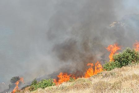 Is Your Bush Home Disaster Management Plan up to Scratch?